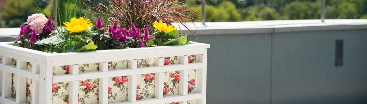 Orto in terrazzo: orti verticali e vasi in legno - Onlywood